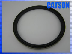 Hydraulic oil seal TB AD5205G 220-250-16