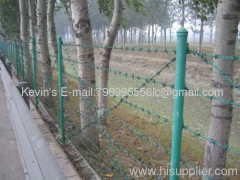 galvanized /PVC coated barbed wire razor wire
