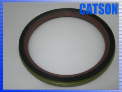 Hydraulic oil seal CFW 190-230-17 FKM