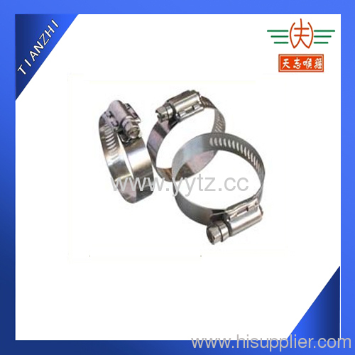 heavy duty worm drive pipe clamps