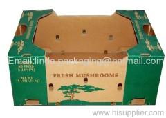 Fresh Mushrooms Packaging Carton
