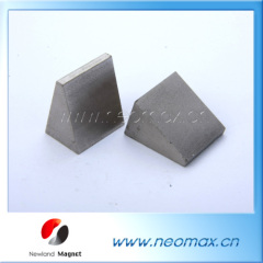 Smco magnet for rotor