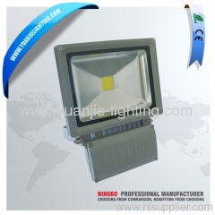 led cob floodlight 30W