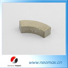 SmCo magnet of segment