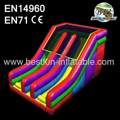 Inflatable Dual Slide Sale