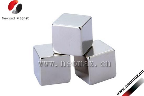 permanent Neodymium Rotor Magnets