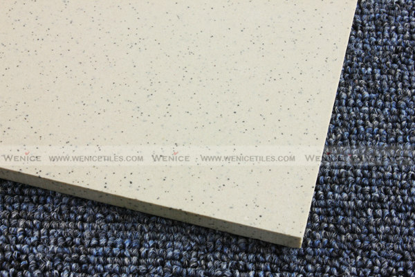Ceramic tiling 12 x12with competitive price