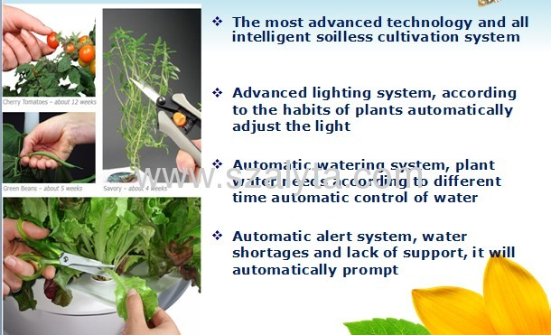 Smart home environment fresh functional diversification stands in one of the fish to grow vegetables smart garden