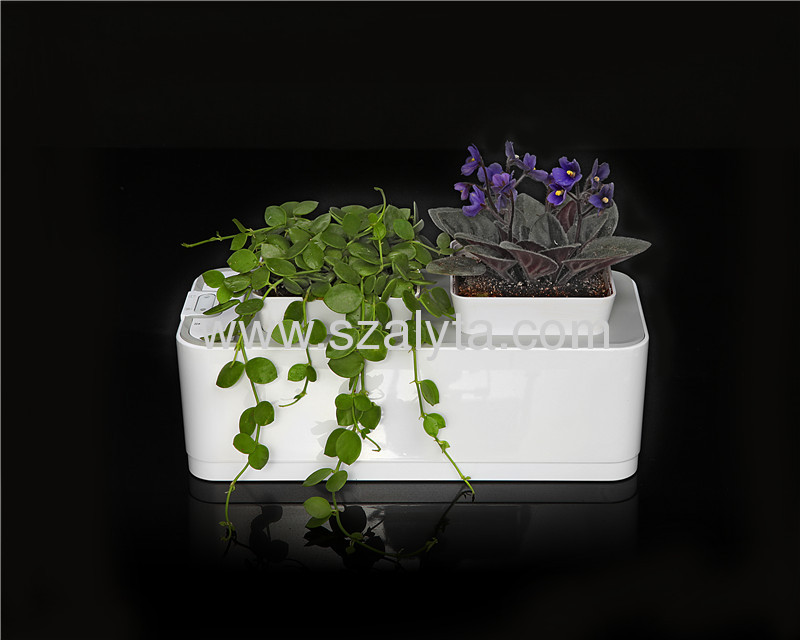 Smart Mini Garden Desktop gardening products Clean, Green, Fashion, Convenient