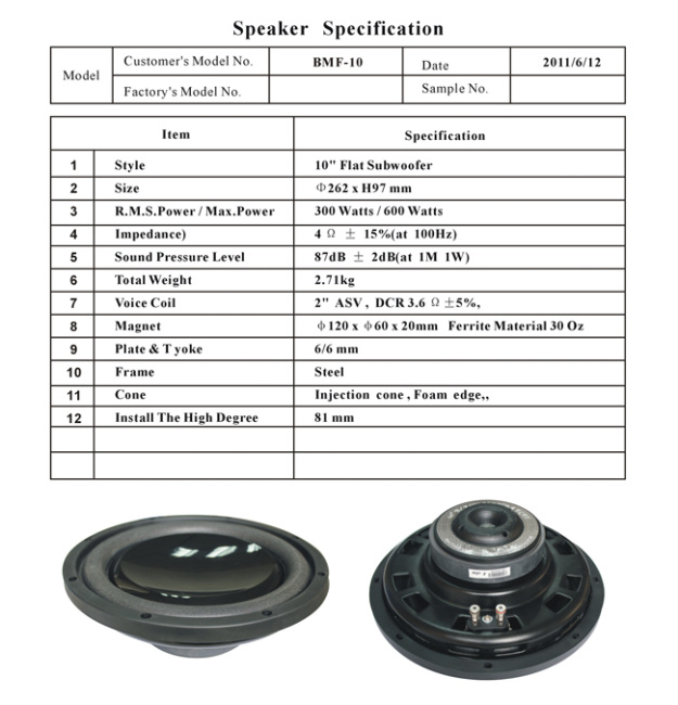 10600W Injection Cone Subwoofer