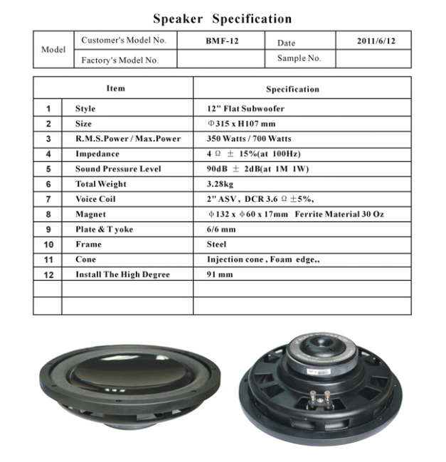 12Silm Injection Cone Subwoofer