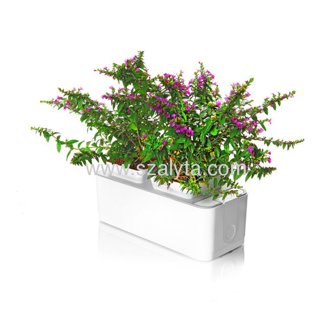 2013 new technology products smart mini garden