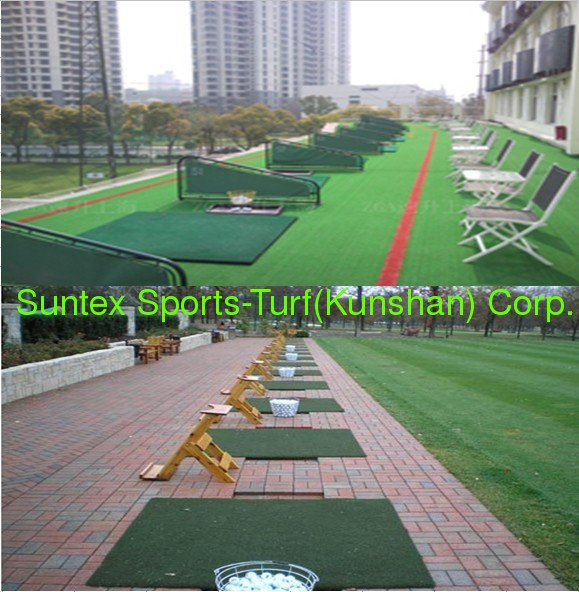 Suntex best quality golf tee grass