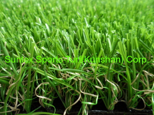 Chinese Ornamental grass manufacturer