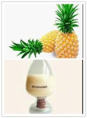 China Pineapple Extract / Bromelain