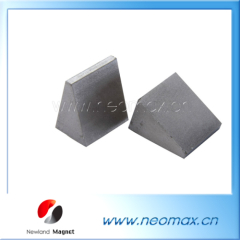 sepcial shape neodymium magnets