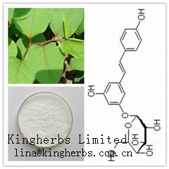 Polydatin (China Kingherbs Limited)