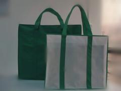 Fashionable non woven shopping bags