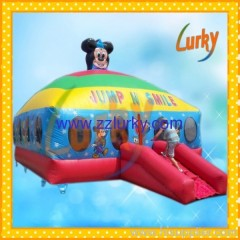 Bouncy house/inflatable bouncer/jumping castles
