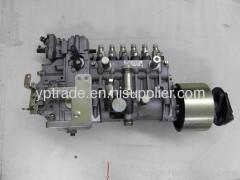 Diesel fuel pumps Injection fuel pump