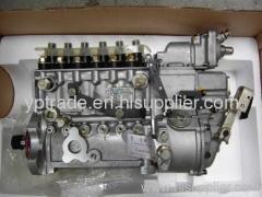 Diesel Pump and Pump Parts