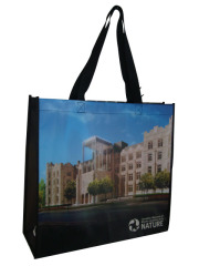 Best Quality PP laminated non woven bags