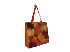 Promotion PP lamination non woven bags