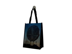 PP laminated non woven tote bags