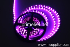Pink 3528 smd LED Strip lights 12V 24V waterproof