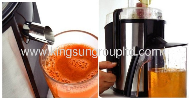 portable stainless steel juicer