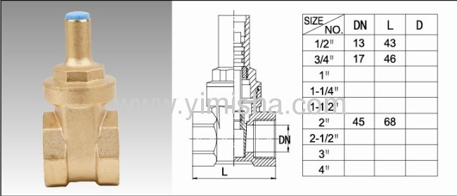 Horizontal Manual BrassNo Handle Two General Formula Gate Valve