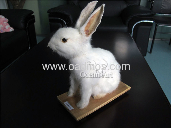 Life Size Cute Animatronic Rabbit