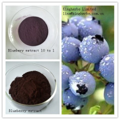 Sell China Blueberry Extract