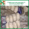 Chinese fresh pure garlic