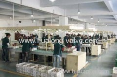 Zhejiang Hualong Valves Co., Ltd.