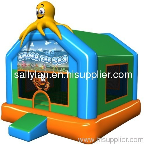 inflatable bouncer/ inflatable castle