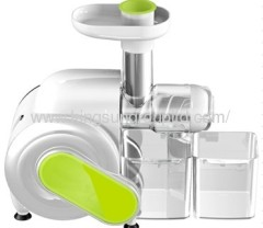 slow fruit vegetable juicer