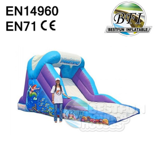 Commercial Inflatable Slide For Baby