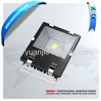 Best price aluminium cob led floodlight