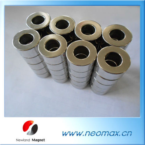 Customized Sintered NdFeB Ring Magnet