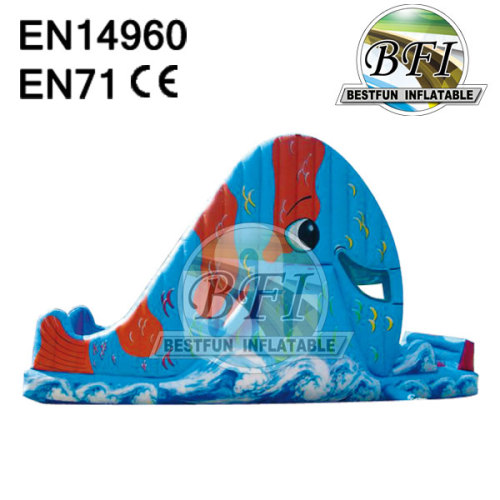 Wet / Dry Whale Sliding Inflatables