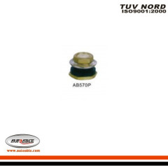 Tubeless Clamp-in Valves for Truck & Bus