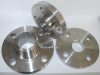 Forged Stainless Steel Flange