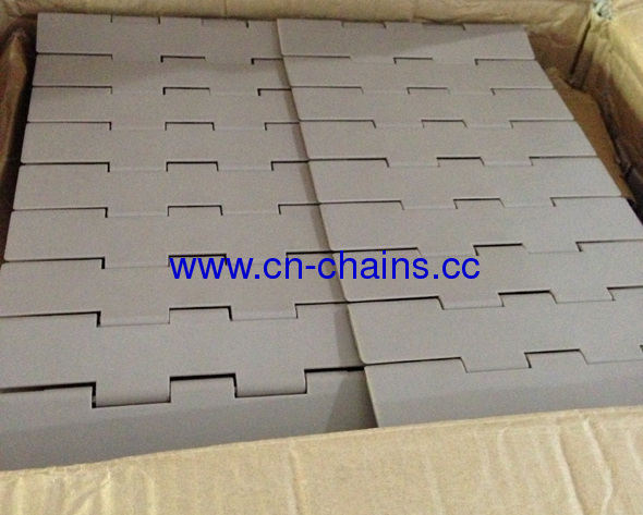 Flat top double hinge plastic conveyor chains (RW821-K750)