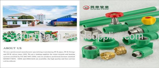 Chinese Hot water pipe SDR6/S2.5 PN20 20-110mm