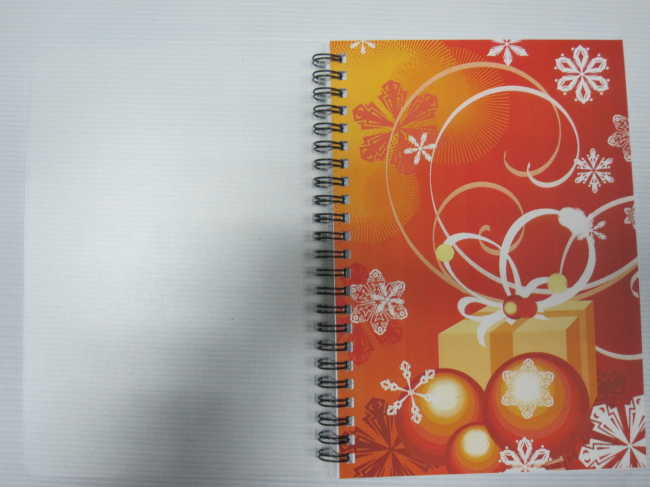 A5 single subjectPP cover spiral notebook college ruled