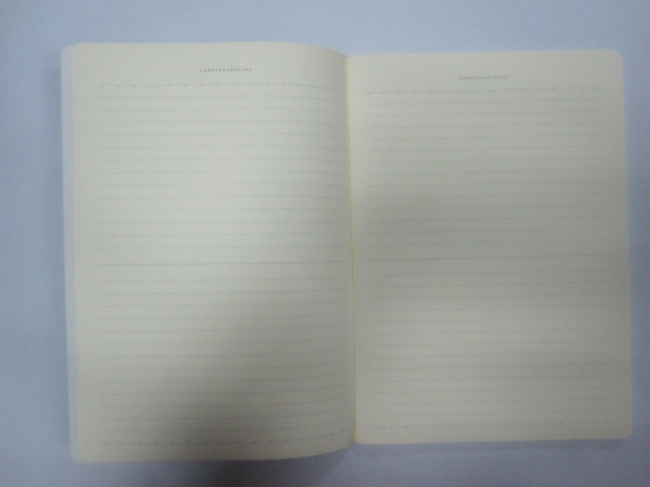 A4 2 subjectsoftcover notebook college ruled