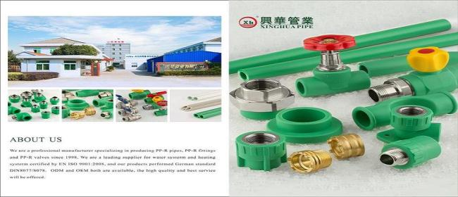 Female Tee PPR Plumbing material from China