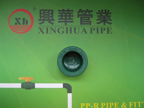 PPR fittings plumbig material PPR end cap from China