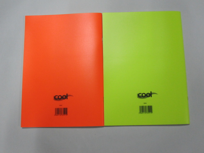 A4 cool colour PP covernotebook college ruled